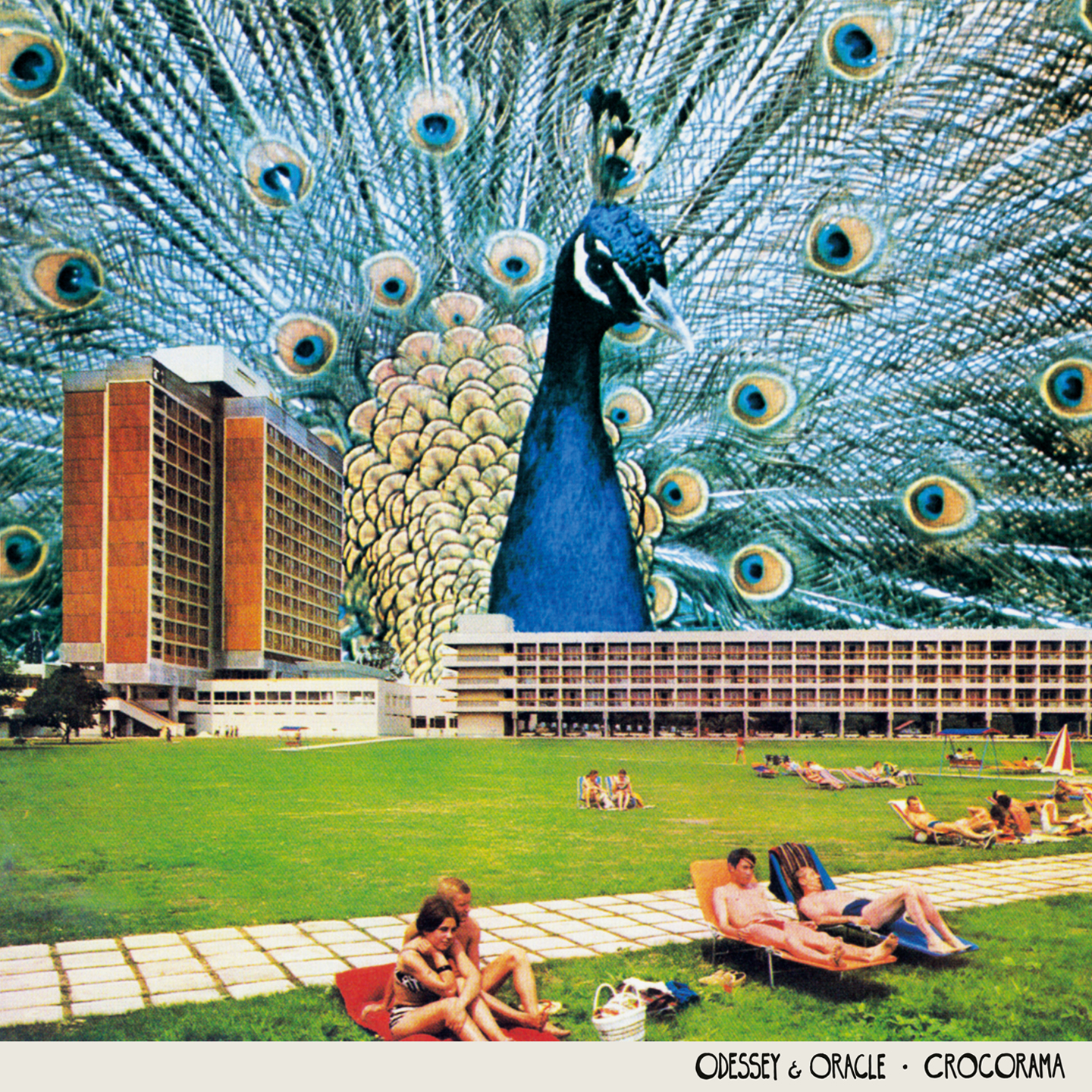 Odessey and Oracle Crocorama